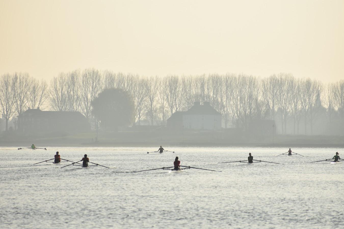 Hel van de Rijn